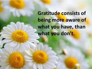gratitude daisies