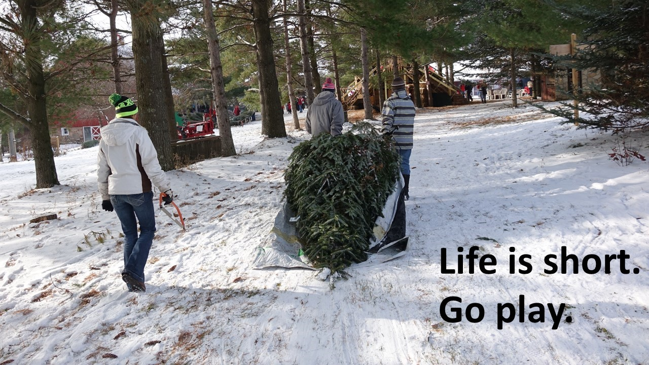 Life is short.  Getting the tree.